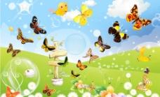 蝴蝶世界图片