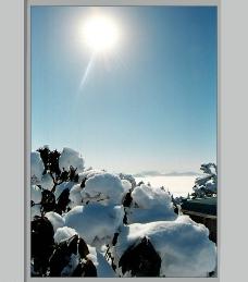 自然风景图白雪皑皑图片