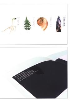 品牌理念20070100